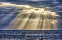 Economic Ray of Sunshine